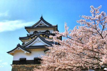 滋賀県の教習料金安い順ランキング(普通車AT)と提携校一覧